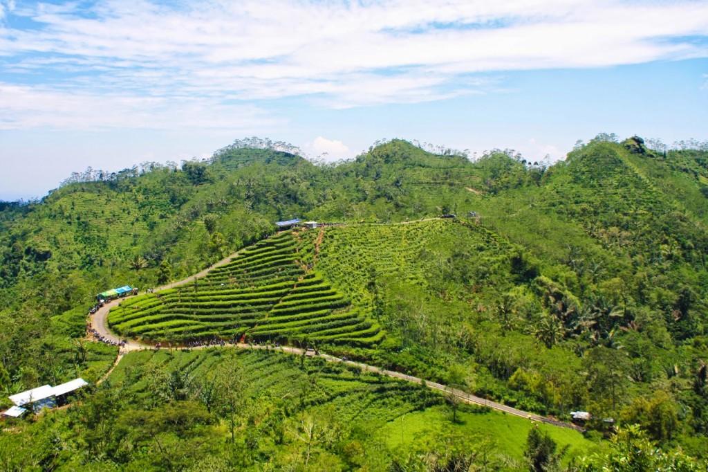 Wisata pemandangan Jogja dari ketinggian