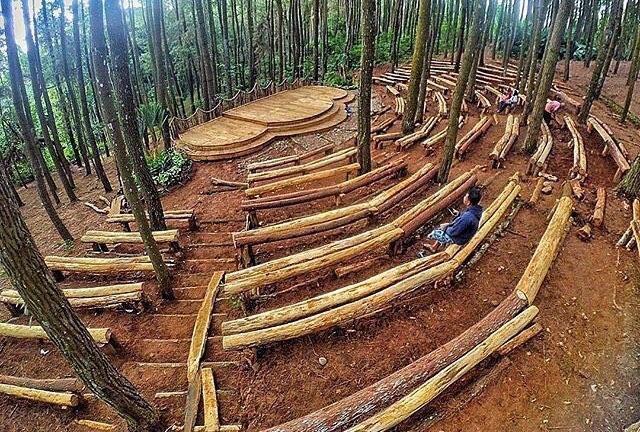 Hutan-Pinus-@gunawanwicaksono28