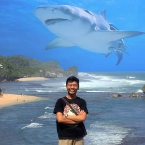 Tutorial edit foto ikan paus terbang